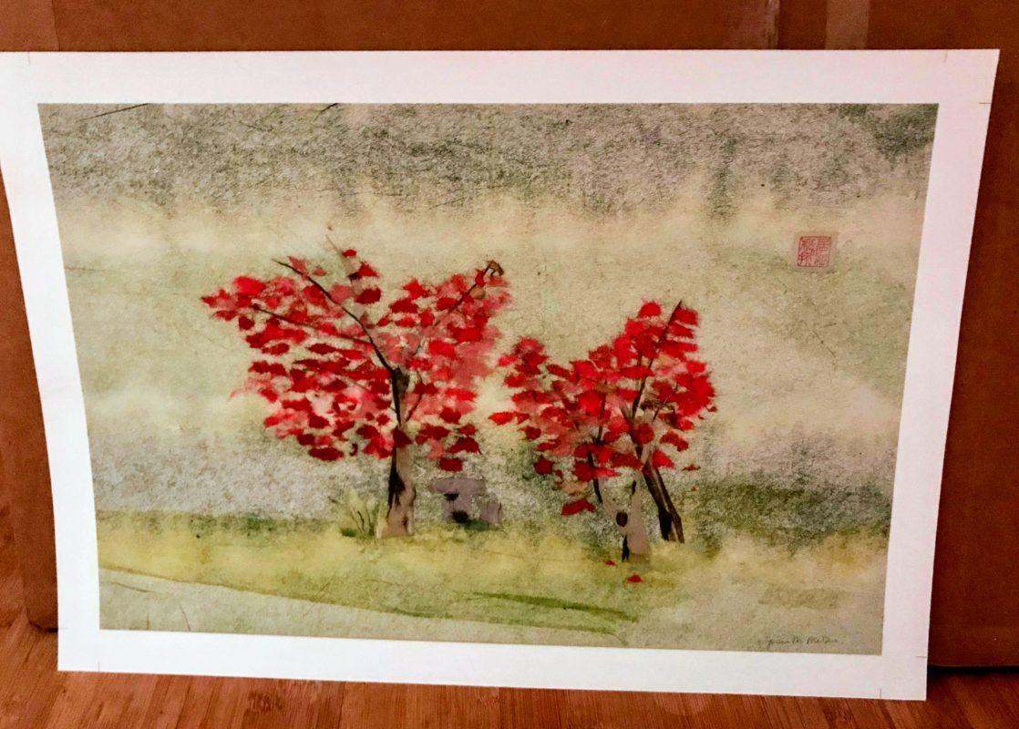 Sakura Chigirie Images